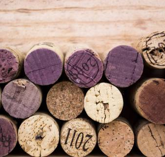 Wines and Cavas of Catalonia Exhibition