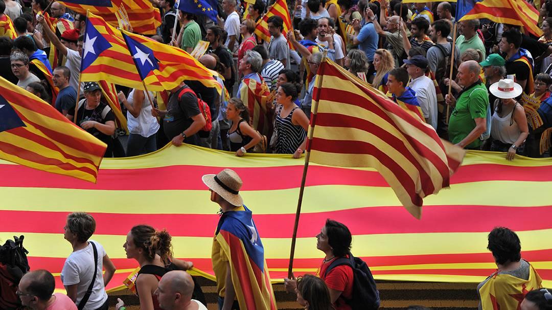 Manifestació durant la Diada Nacional de Catalunya