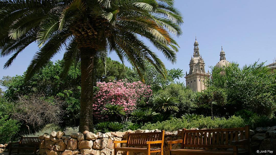 Zona ajardinada en Montjuïc