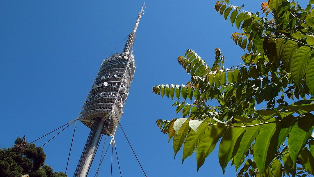 View of the Collserola Tower