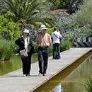 Un tronçon du Jardin botanique
