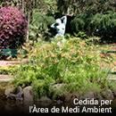 Estany als jardins de la Vil·la Amèlia