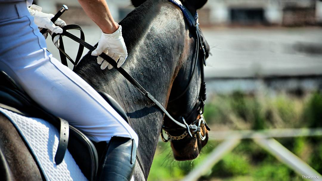 The CSIO Barcelona International Show Jumping Competition