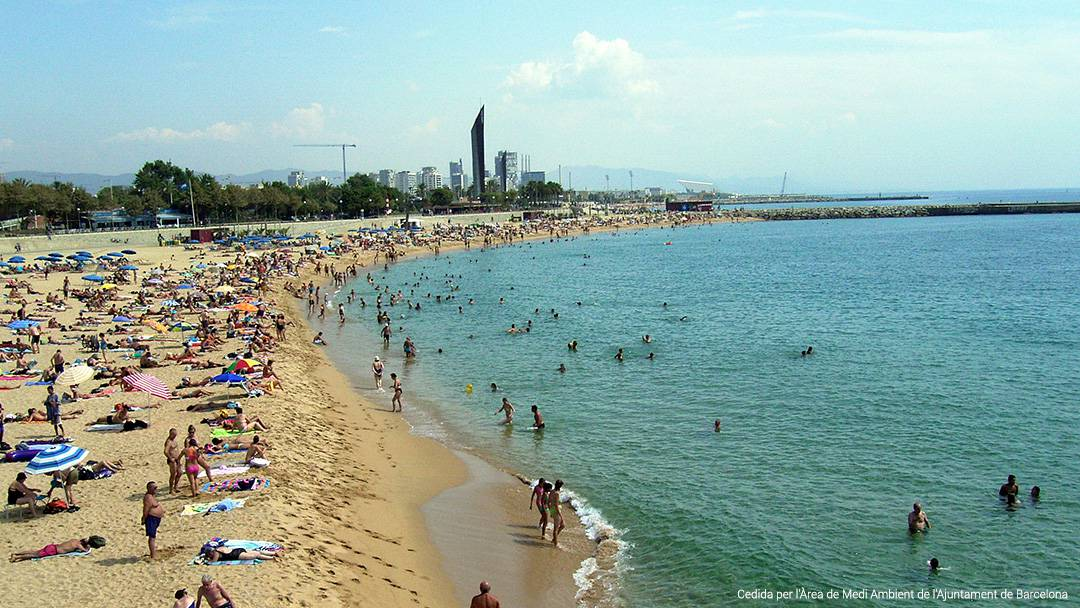 View of Nova Icària Beach