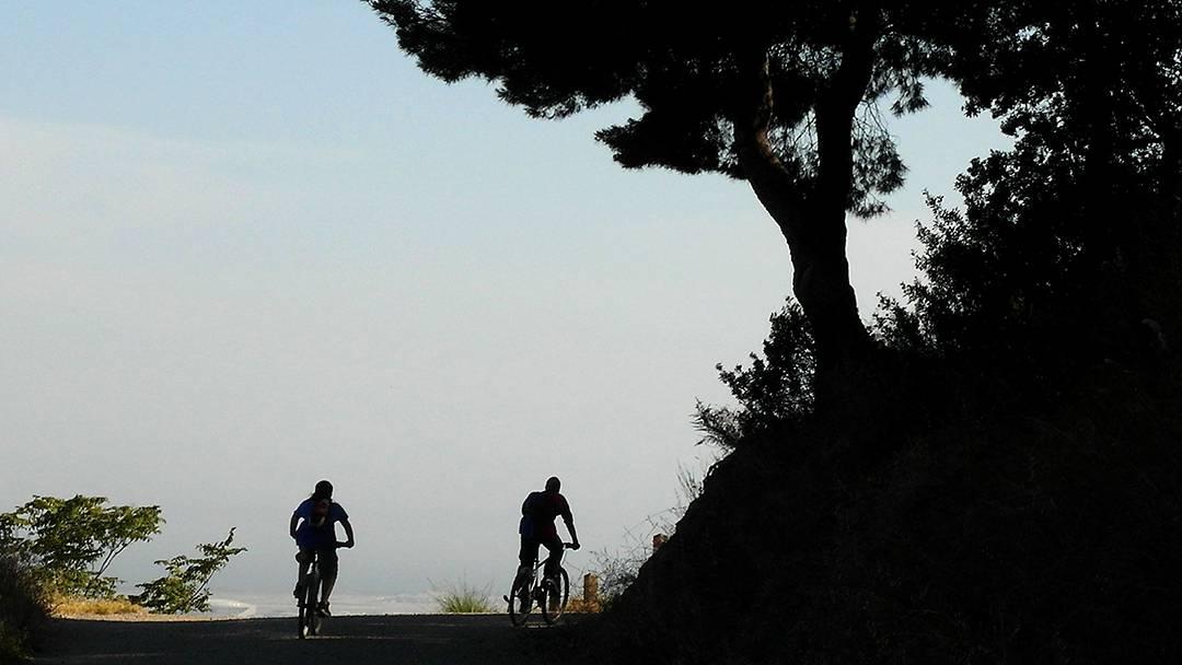 Paths in Parc de Collserola