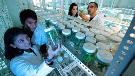 Biomedicina – Millorar la salut dels ciutadans mitjançant la recerca