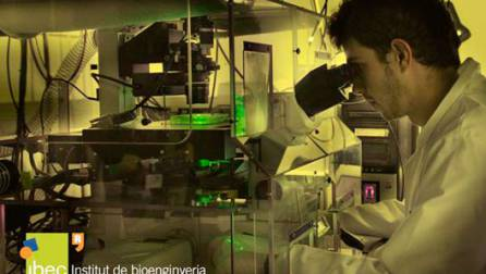 Bioengineering Institute of Catalonia