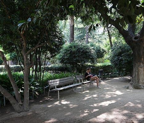 Els jardins del Palau Robert