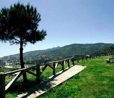 Le parc naturel de Collserola